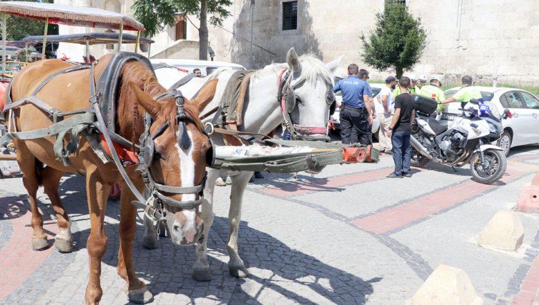 Edirne'de faytonculara ceza yağdı