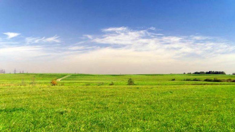 Edirne'de icradan satılık tarım arazisi