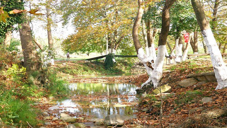 Tekirdağ'da sonbahar güzelliği