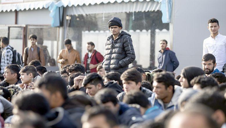 Edirne'de 30 düzensiz göçmen yakalandı