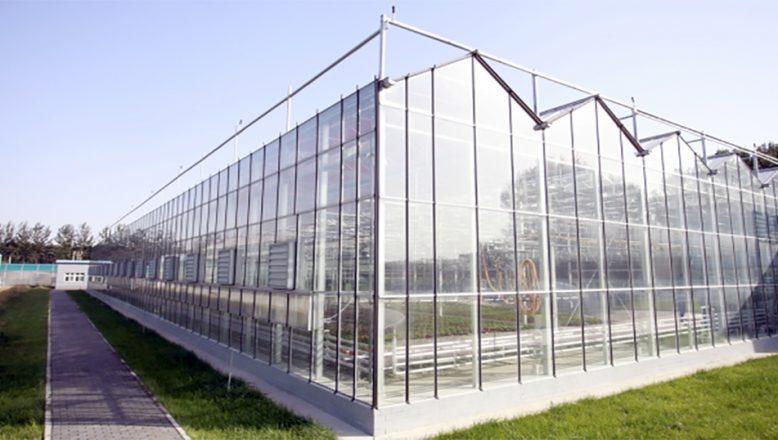 Tarımsal Araştırma cam sera yaptıracak