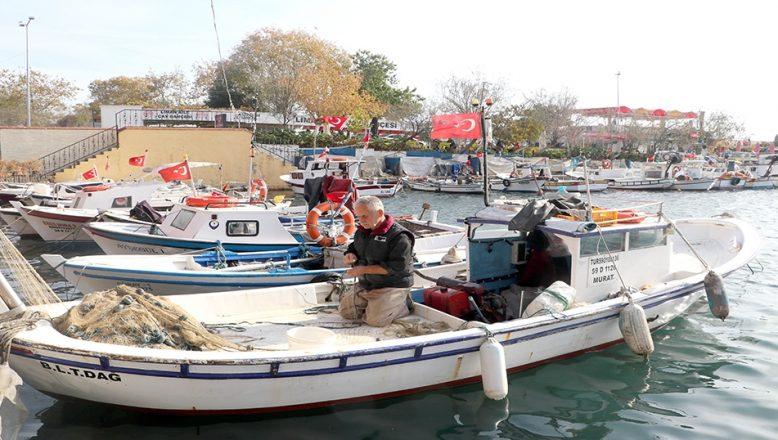 Tekirdağlı balıkçılar kanun değişikliğinden memnun