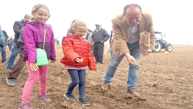 Yerli tohumlar toprakla buluştu