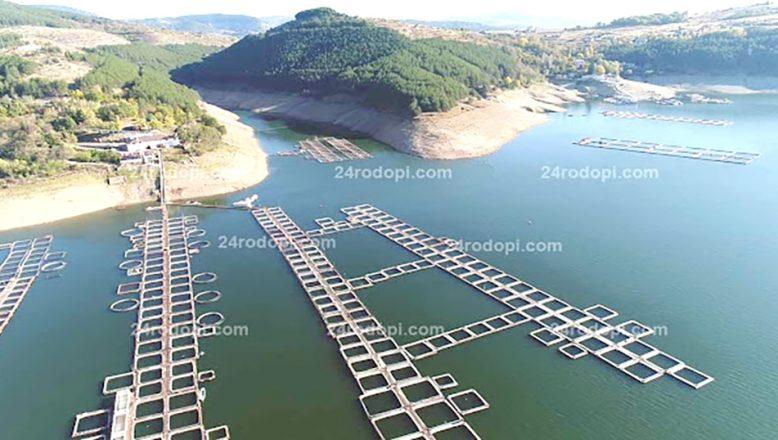 Balık yetiştirme kafeslerinin sayısı artıyor