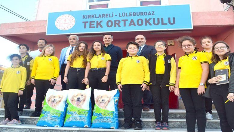Kampanya düzenleyerek, sokak hayvanlarını beslediler