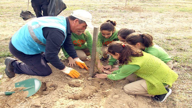 '11 Milyon Ağaç; Bugün Fidan, Yarın Nefes' programı