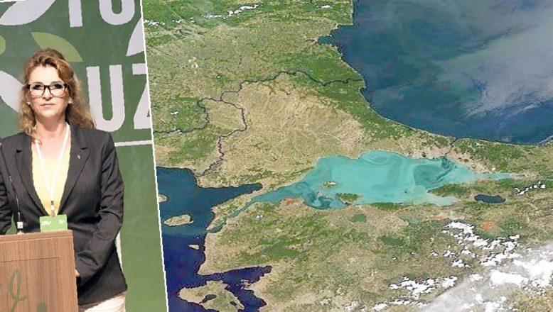 TEMA Vakfı'ndan Kanal İstanbul uyarısı