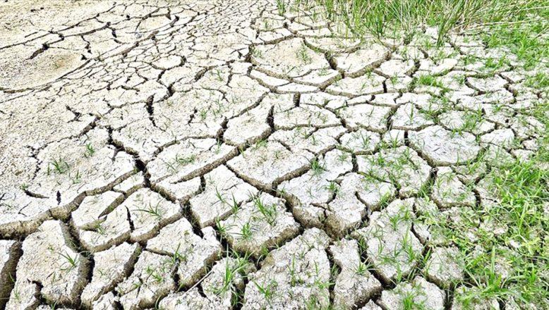 İklim değişikliğiyle mücadele için yol haritasını açıkladı