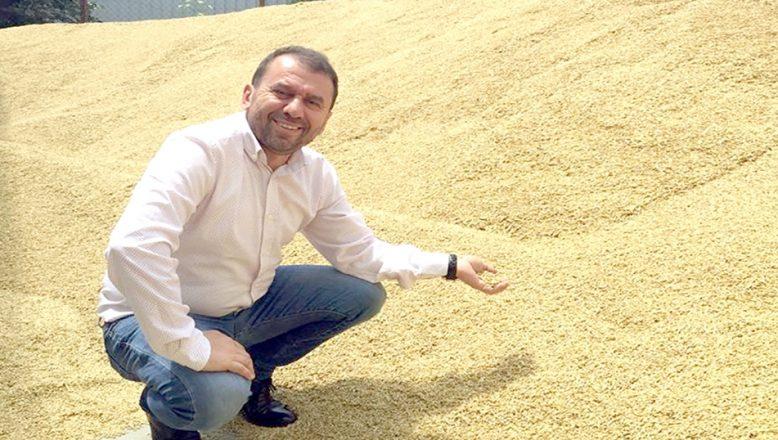 Trakya yerli tohum üretiminde lider