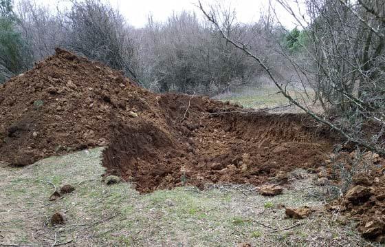 İhbar üzerine yapılan kazıda kemik parçaları bulundu