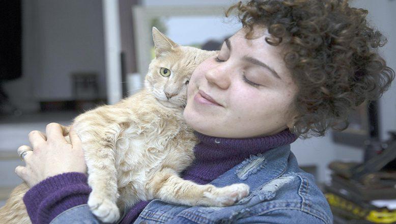 """Kedi """"Behlül""""ün bacağındaki tümör esnafın topladığı yardımla alındı"""