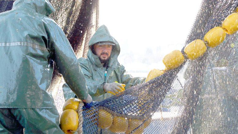 """Deniz salyası"""" Tekirdağlı balıkçılara paydos ettirdi"""
