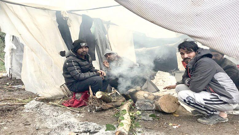 Dört sığınmacı AİHM'e başvurdu