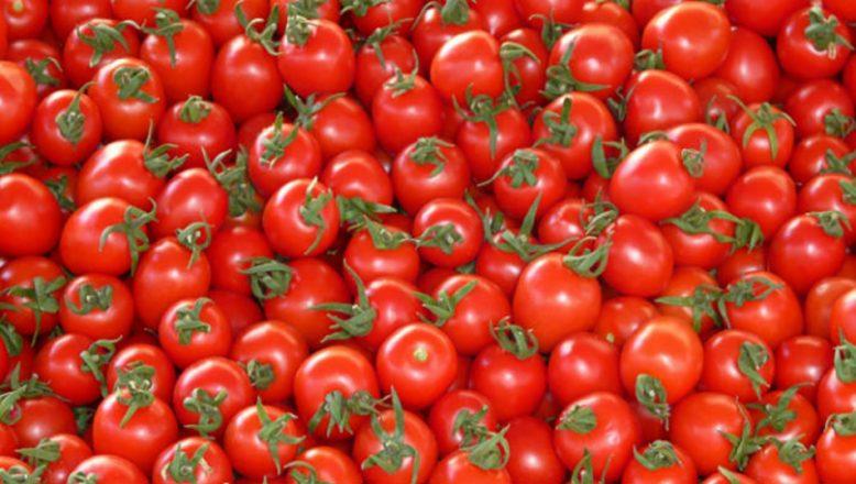 Bulgaristan, Türkiye'den ithal edilen 5 ton domatesi imha edecek