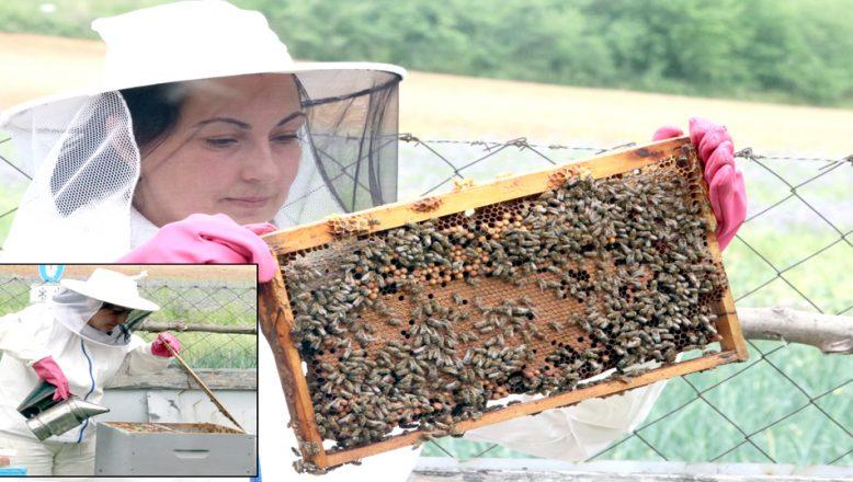 'Altın kızlarım' dediği arılarıyla, patroniçe oldu