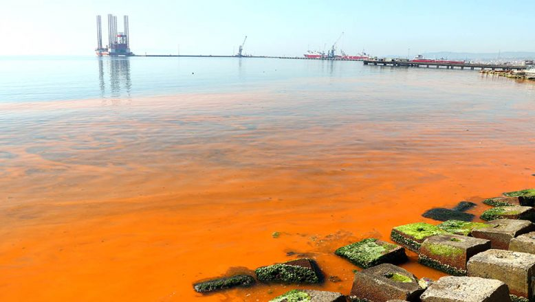 Deniz suyu turuncuya döndü!