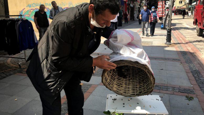 Saraçlar Caddesini arılar bastı