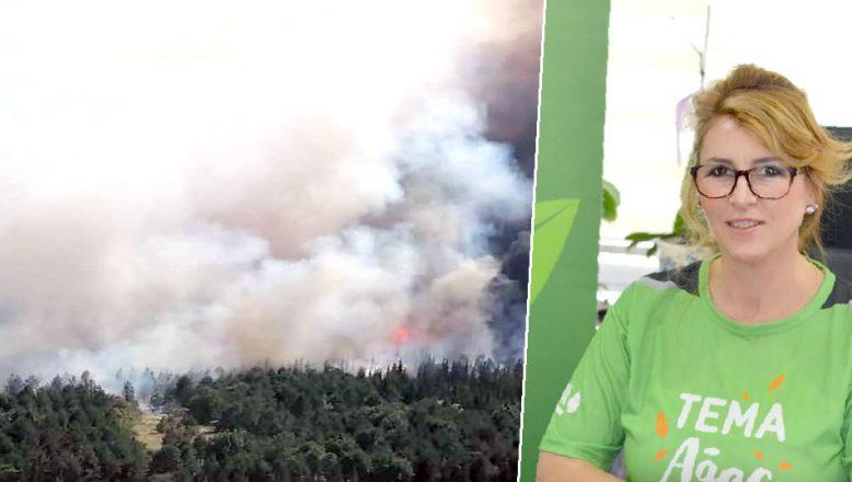 """TEMA'dan orman yangını uyarısı; """"Küçük ihmaller felaket getirir!"""""""