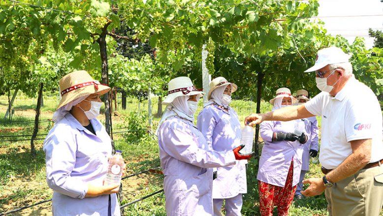Türk Böbrek Vakfı, tarlada çalışan kadınlara su dağıttı