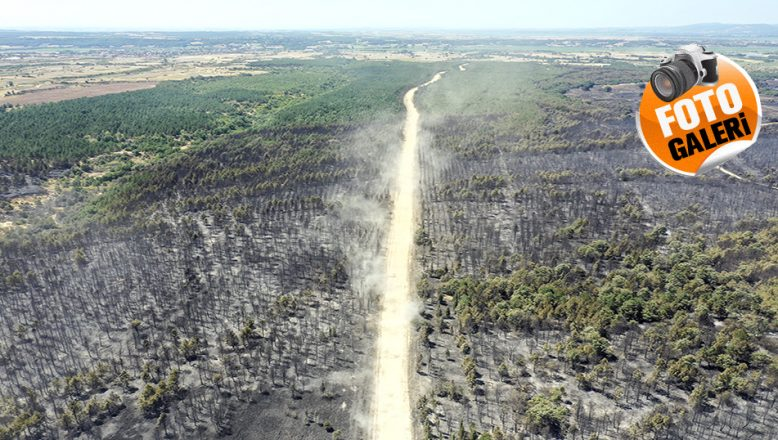 Yangın sonrası yürek sızlatan görüntü