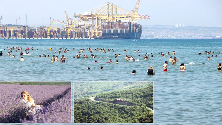 Doğası, denizi ve mor tarlalarıyla, misafirlerini ağırlıyor