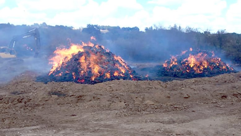 Balyaları yanan çiftçi için yardım kampanyası başlatıldı