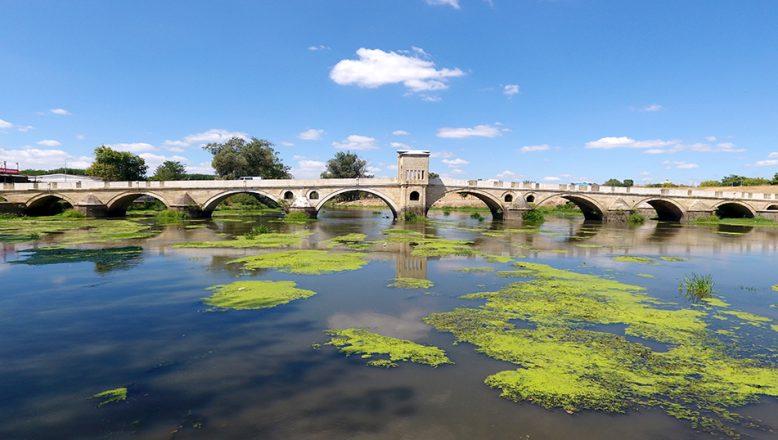 Tunca Nehri yeşile büründü