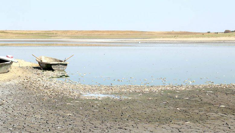 Gölete balıklar için can suyu verildi