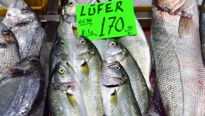 """""""Denizlerin prensi"""" lüfer, kilogramı 170 liradan tezgahta"""