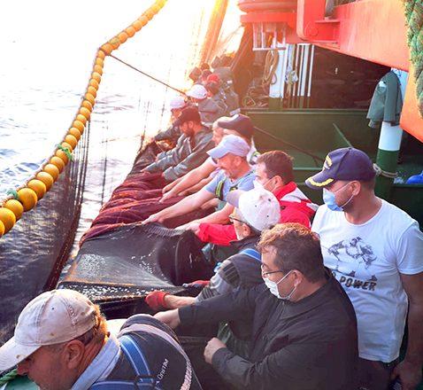 Balıkçılarla birlikte ağ çekti
