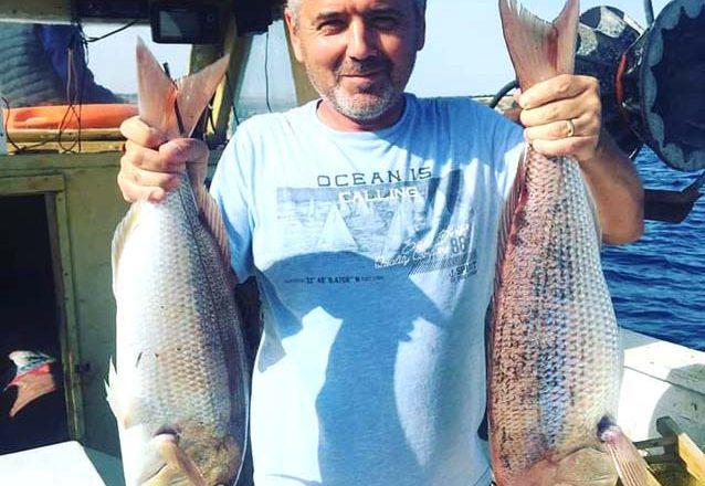 Saros Körfezi'nde balık bereketi