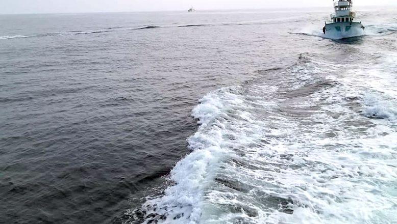 Deniz dibi temizliği yapıldı