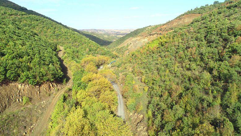Ganos Dağı ormanlarından görsel şölen