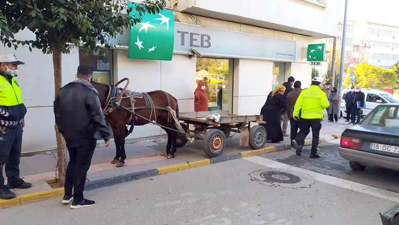 At arabasına park cezası