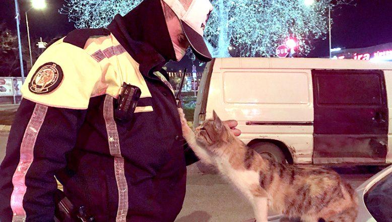 Üşüyen kedi polislere sığındı