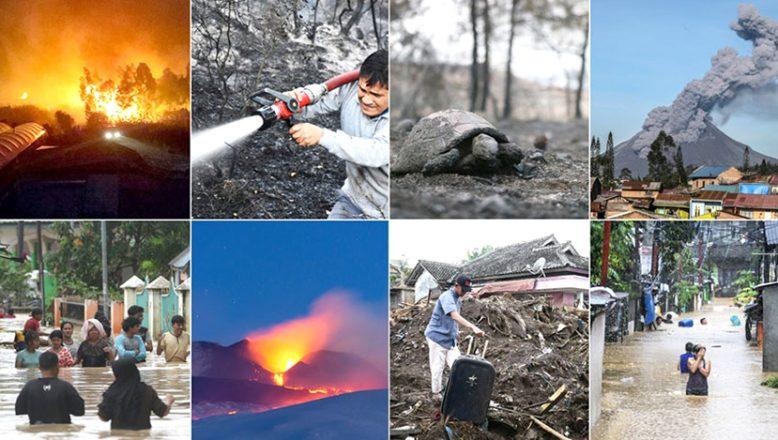 2020'de Dünya, doğal afetlerle sarsıldı