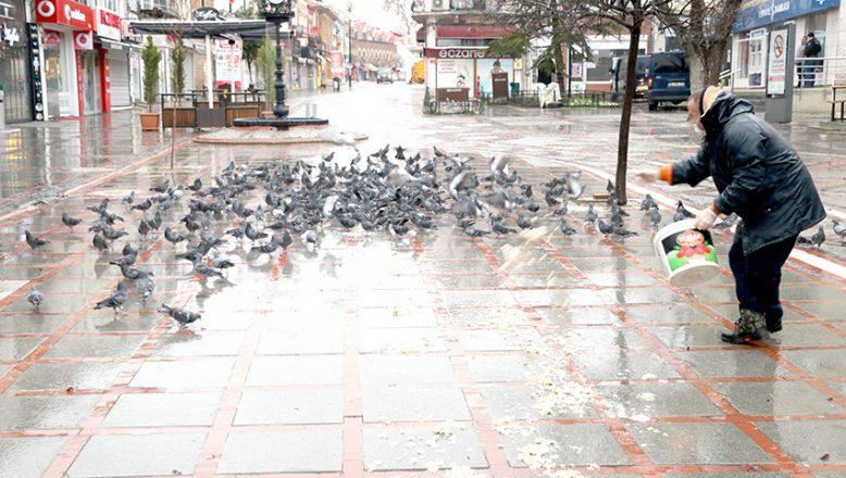 Güvercinleri unutmadı