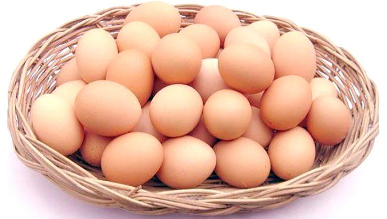 Yumurta alınacak