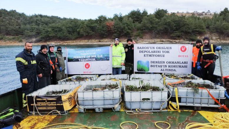 BOTAŞ, FSRU projesinde deniz çayırlarını da taşıyor