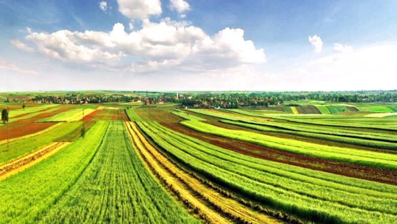 """""""Tarım arazileri, doğuda ucuzlarken, kuzeybatıda pahalılaşıyor"""""""
