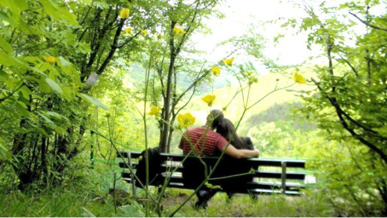 """Dinlenme yeri, ümit ve dünya görüşü olarak, """"Aşk"""""""