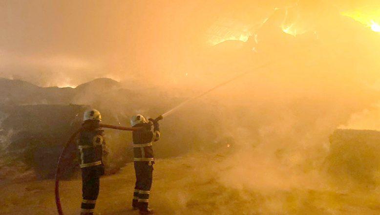 Hayvan çiftliğinde yürekleri ağza getiren yangın