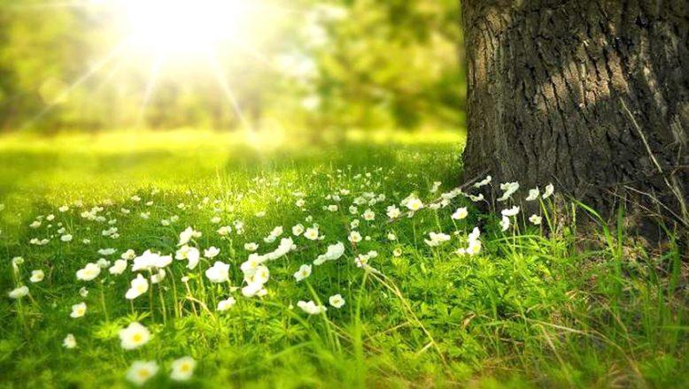 """""""İlkbahar'da, cilt problemlerine dikkat"""""""