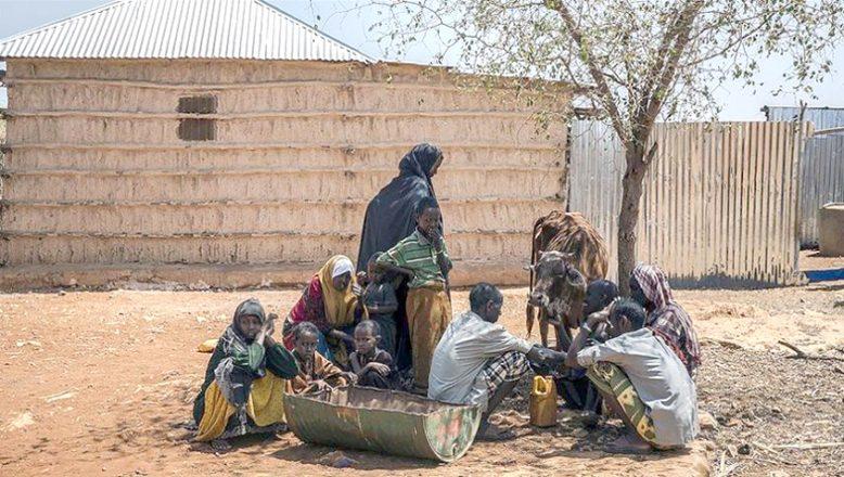 """""""Somali'de kuraklık, ülkenin en az yüzde 80'ini etkiliyor"""""""