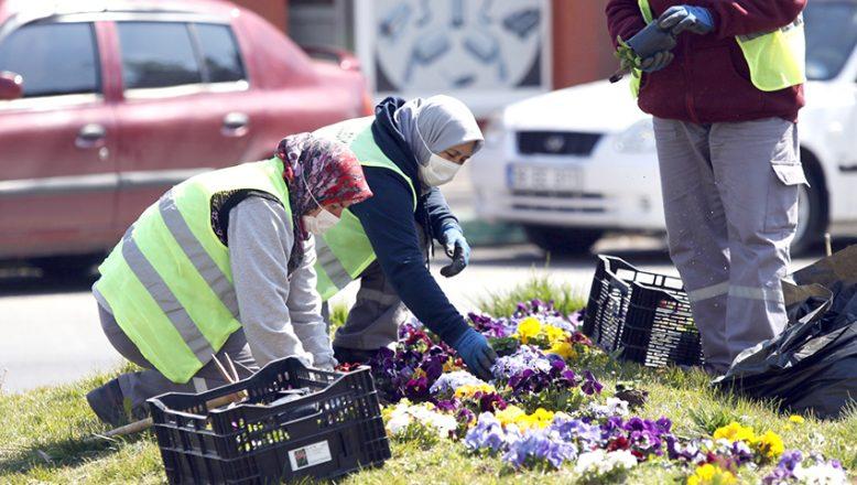 Bahar Çiçekleri toprakla buluşuyor