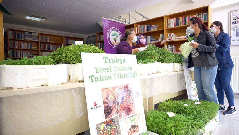 Yerel tohumdan yetiştirilen sebze fideleri dağıtıldı