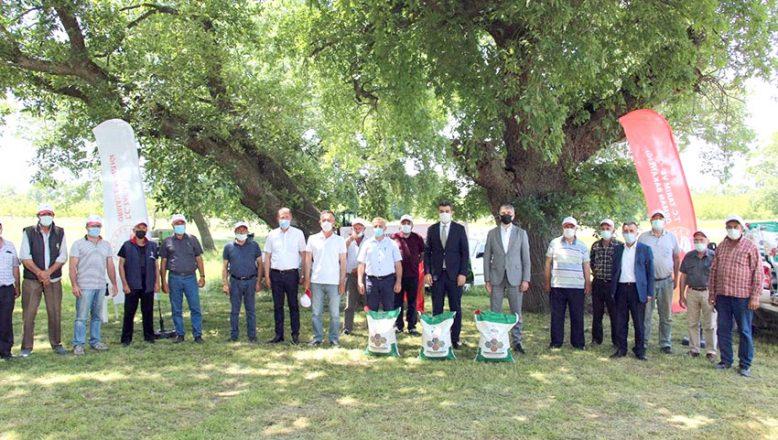 8 ton kuru fasulye tohumu dağıtıldı