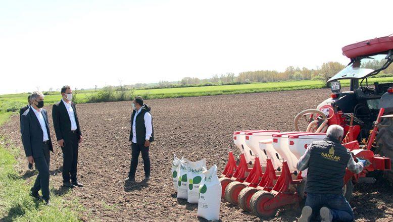 Soya tohumları toprakla buluştu