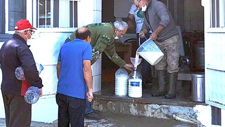 Vatandaşlara ücretsiz süt dağıtıldı