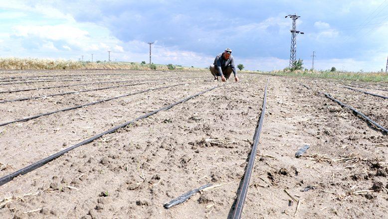 Eğimli araziler tarıma kazandırılıyor
